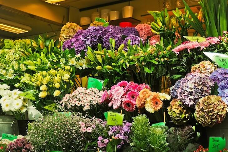 Blumen weltweit