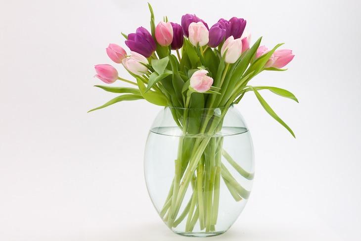 tulpen-in-blumenvase